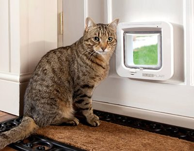 Microchip Cat Doors