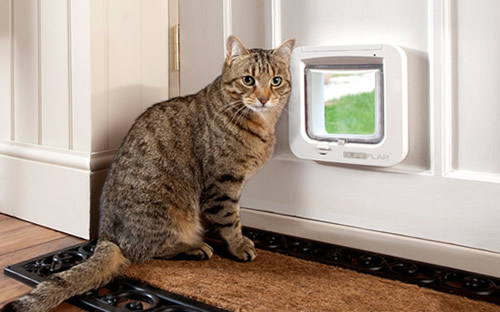 Melbourne Pet Doors The Pet Door Installation Specialists