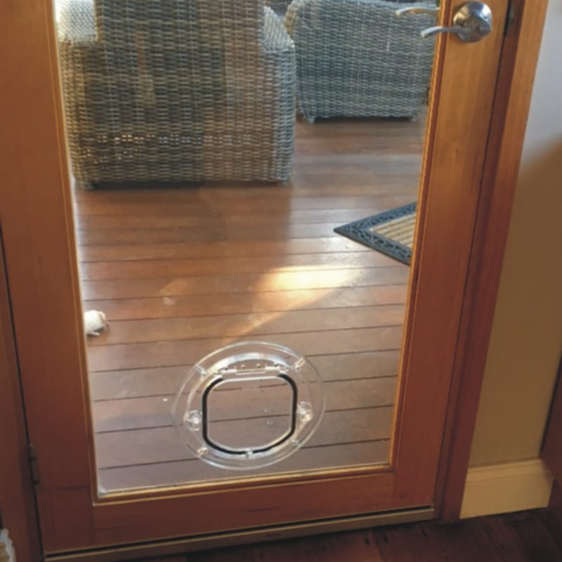Small Dog Door For Glass Supplied Installed Melbourne Pet Doors