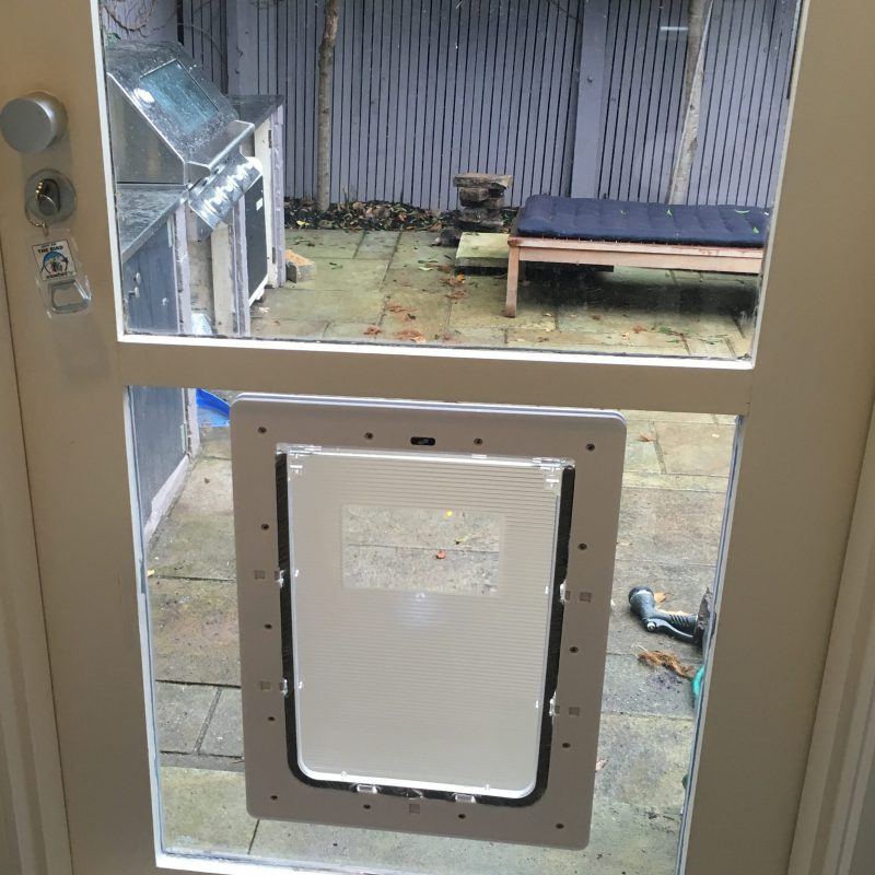 Large Dog Door For Glass Supplied Amp Installed