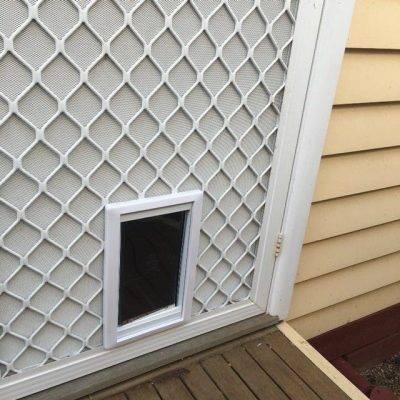 Dog Doors Melbourne Pet Doors