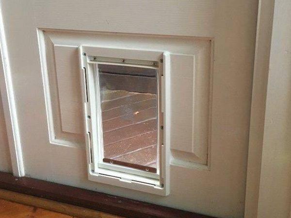 Medium Dog Door For Timber Supplied Amp Installed
