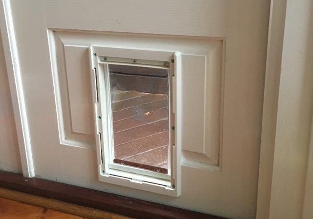 Medium dog door for timber doors supplied installed - Interior door with pet door installed ...